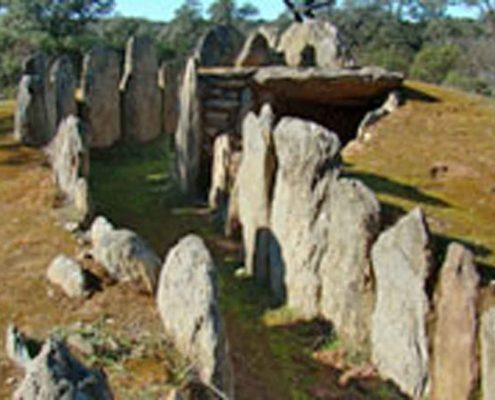 Imagen Montagut Eco-House (4)