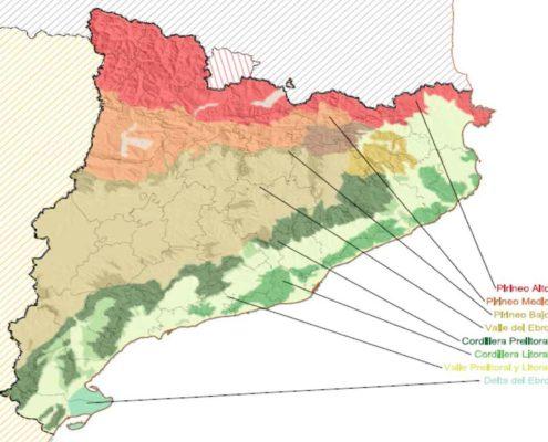 Mapa Morfologico de Catalunya