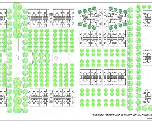 3. El Rodeo Social Eco-City. Detailed Urban Plan 2